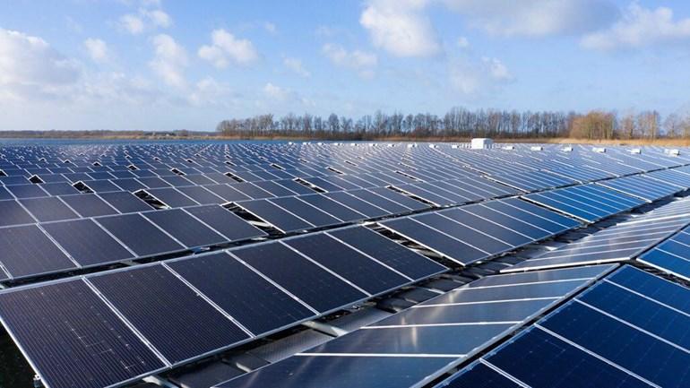 Zonneweide windparken Roelofs ingenieursbureau